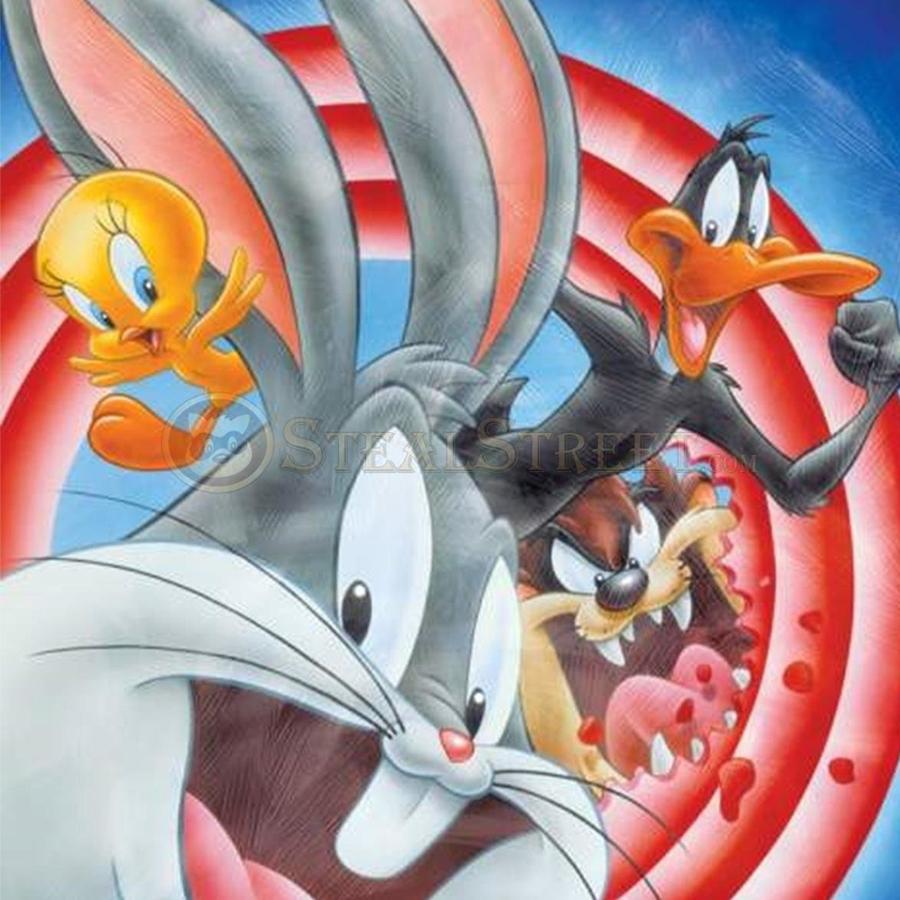 Looney Tunes Bulls Eye Canvas Wall Art
