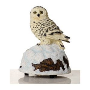 Owl music box